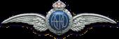 Aerographics (logo)